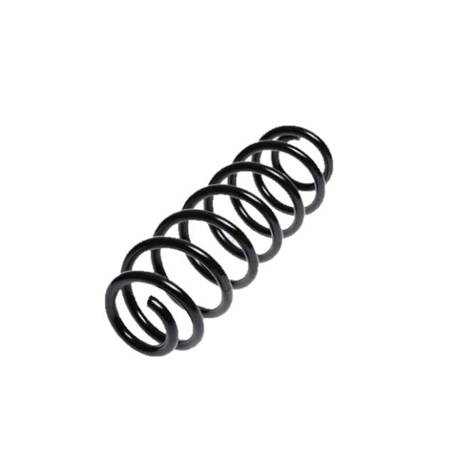 Arc spiral Lesjöfors 4285718, parte montare: punte spate