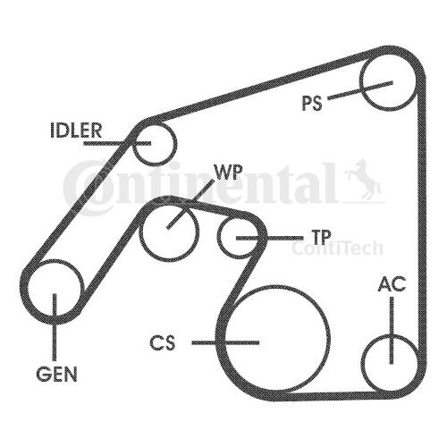 Set curea transmisie cu caneluri Contitech 6PK2271D2