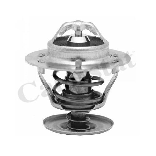 Termostat lichid racire Calorstat By Vernet TH575088J