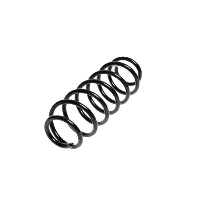 Arc spiral Lesjöfors 4204247, parte montare: punte spate
