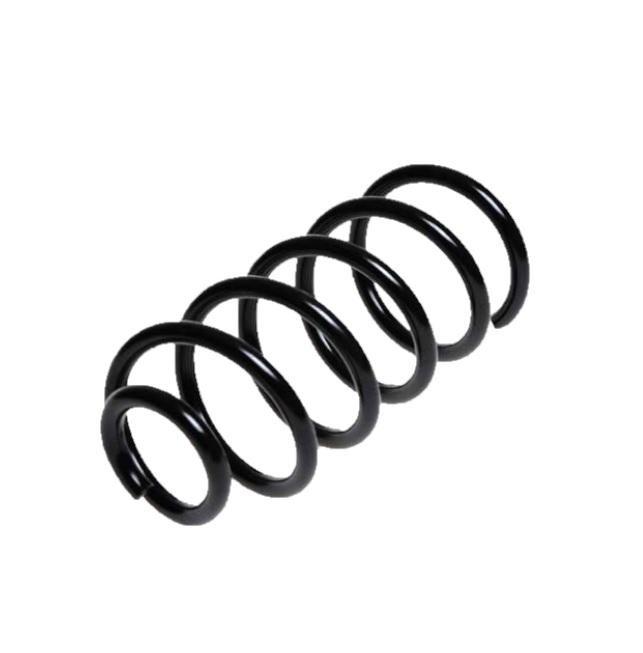 Arc spiral Lesjöfors 4226103, parte montare: punte spate
