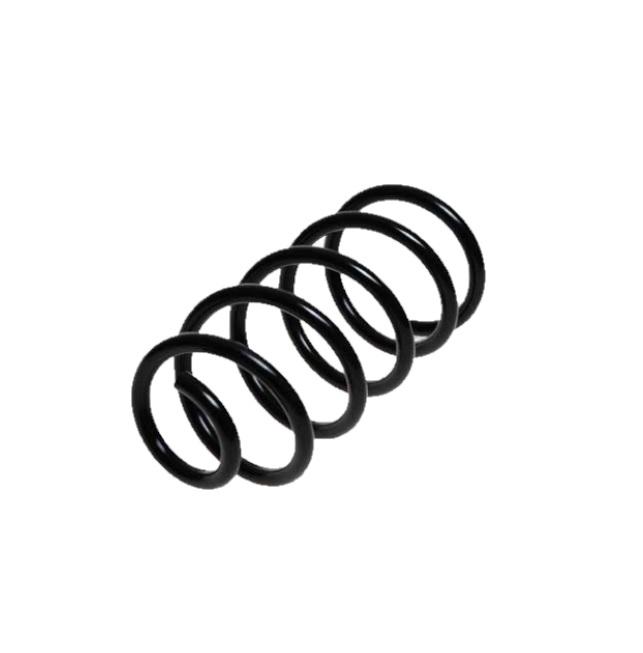 Arc spiral Lesjöfors 4226120, parte montare: punte spate