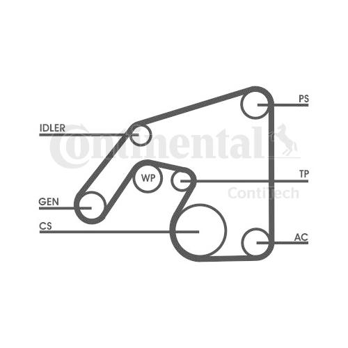 Set curea transmisie cu caneluri Contitech 6PK2390D1