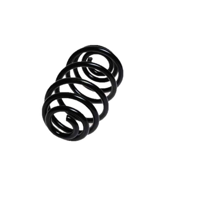Arc spiral Lesjöfors 4263485, parte montare: punte spate