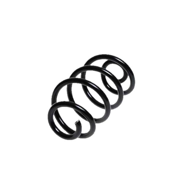 Arc spiral Lesjöfors 4272927, parte montare: punte spate
