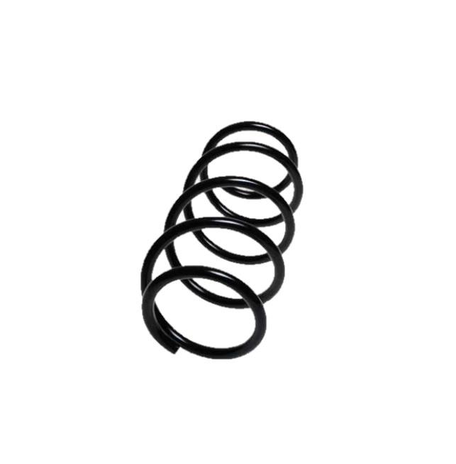 Arc spiral Lesjöfors 4072965, parte montare: punte fata